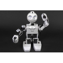 JD - Humanoid Intelligent Robot